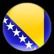 Bosnische vertalingen